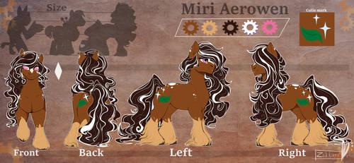Miri Aerowen [COM]