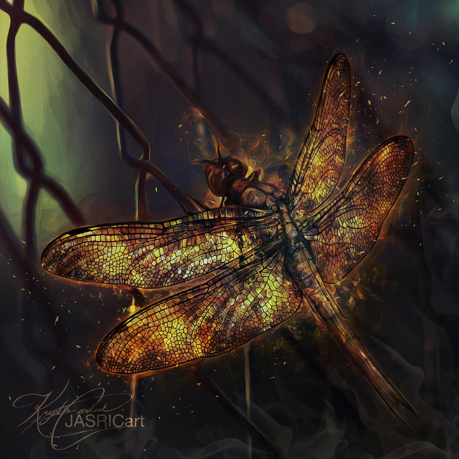 Fire Dragonfly by jasric