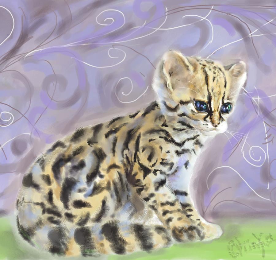 Ocelot house cat