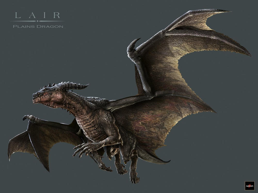 Plain hero Dragon by ziopredy