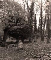graveyard 3 by heyla-stock