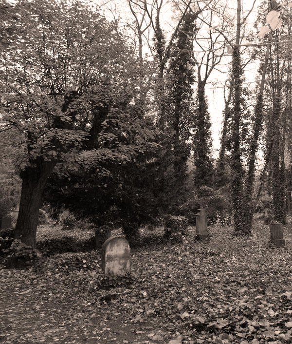 graveyard 3 by heyla-stock