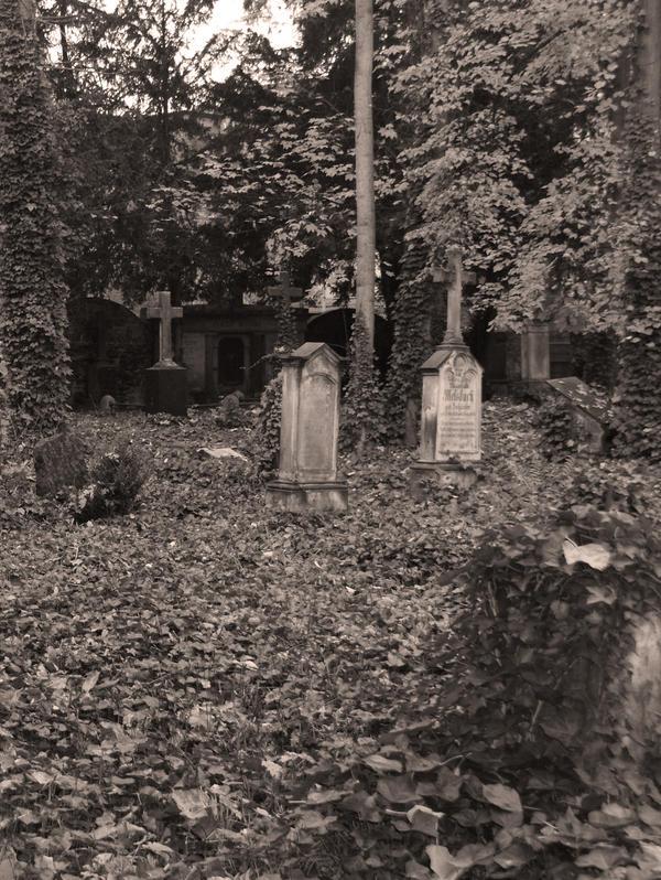 graveyard 4 by heyla-stock