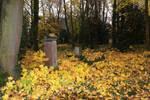 tombstone 5