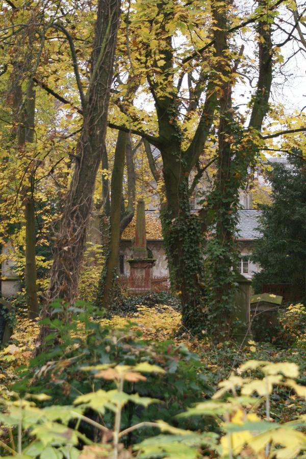 cemetery 1 by heyla-stock