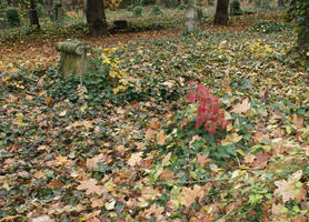 cemetery 2 by heyla-stock