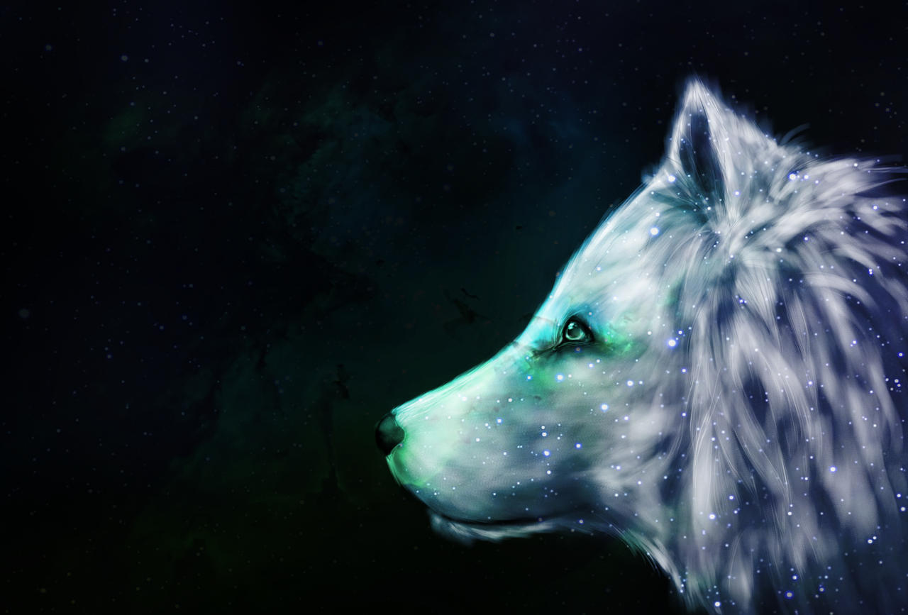 Galaxy wolf wallpaper