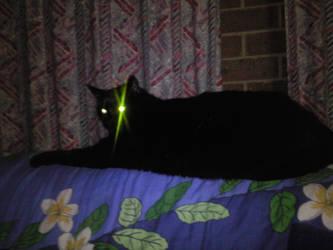 Laser eye Mitch by lynx318