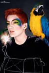 Parrot Fashion II