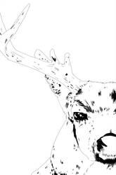 Deer by tiagogartist