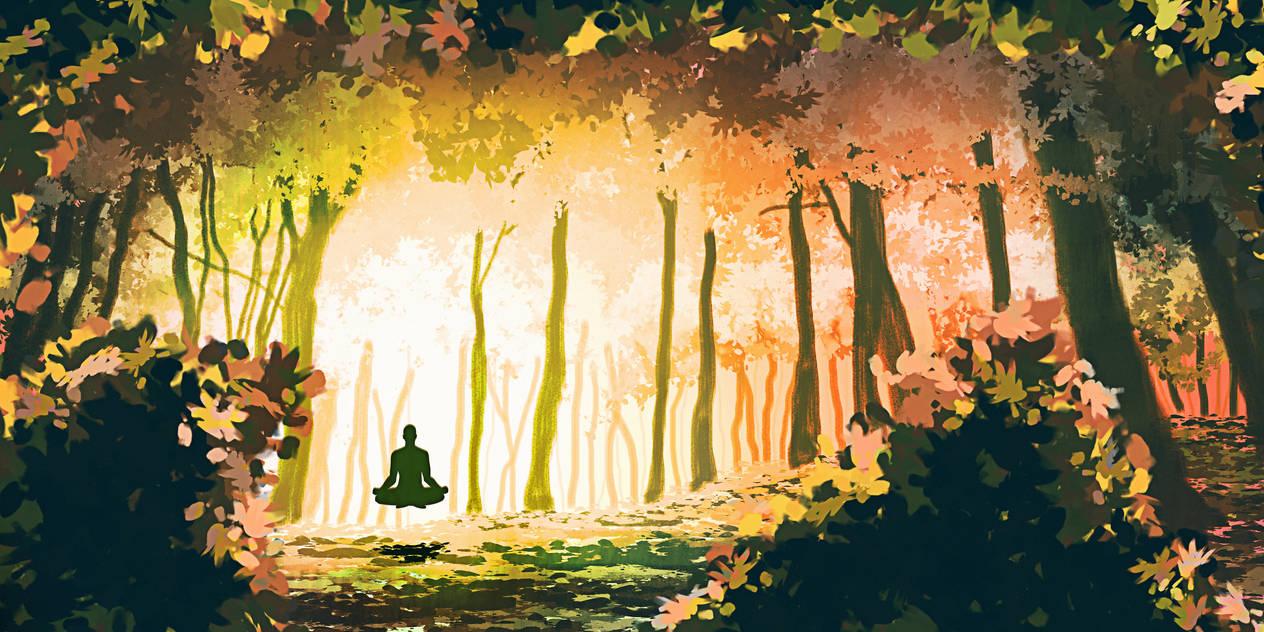 016 - Book of Gaya - Meditation en foret