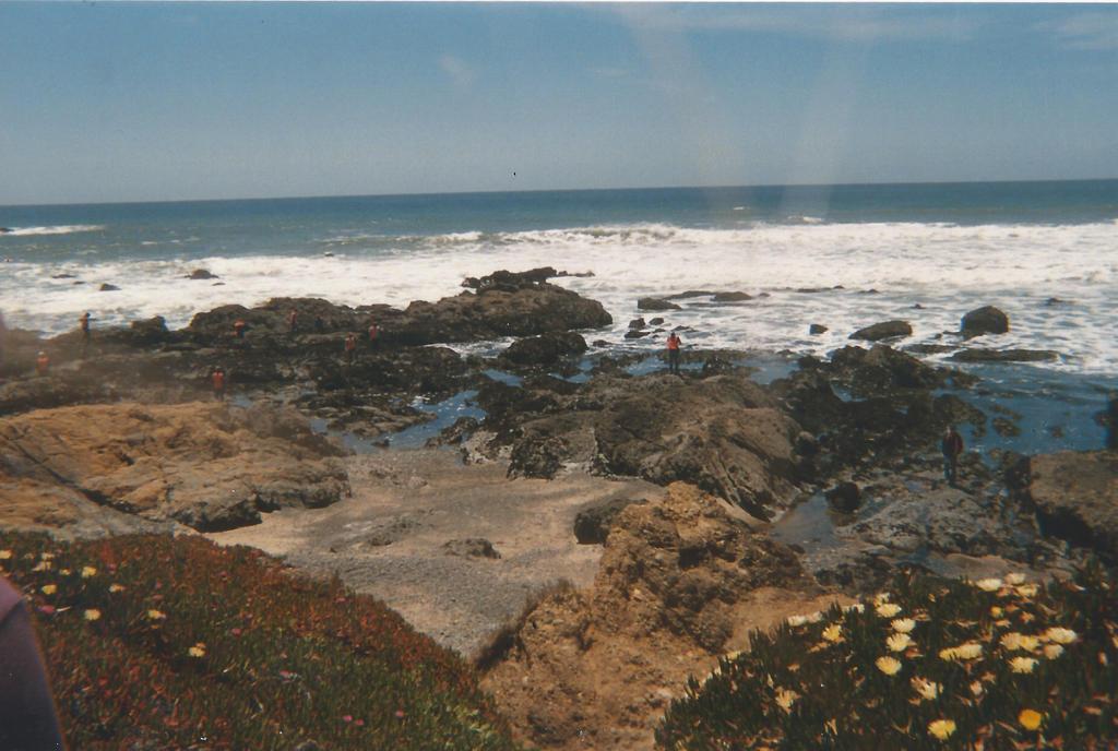 Rocky Beach by Blue-Gypsy23