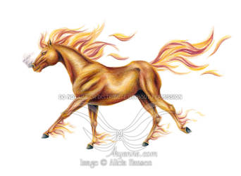 Fire Horse - No BG by Aryenne