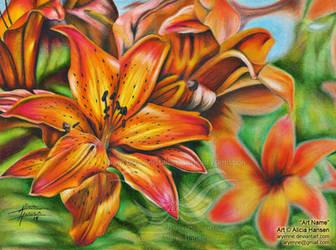 Fire Gazer Lilies by Aryenne