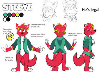 Steeve Reference Sheet 2014