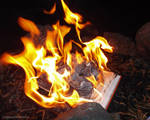 Burn the Book of Lies Part I