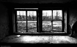 Broken Window by satanen
