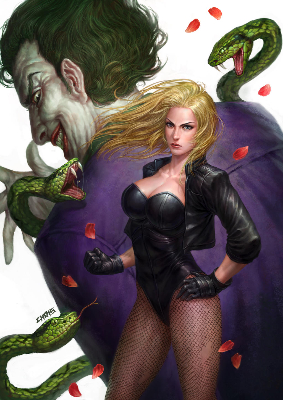Black Canary Vs Joker by chrisnfy85