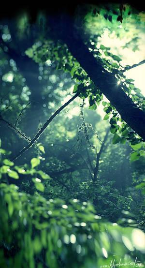 Green Joy