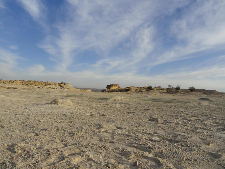 Desert Valley 42