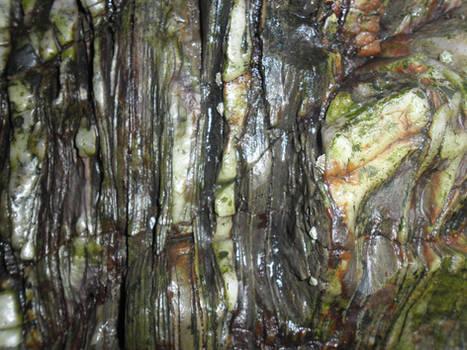 Sea rock texture