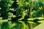 Serenity by RainOfDragon