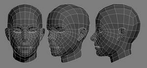 Agent Face Wires 2