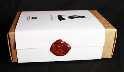 Eve Shield Maiden box! by HazardousArts