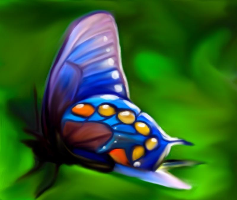 Butterfly by Sorceress2000