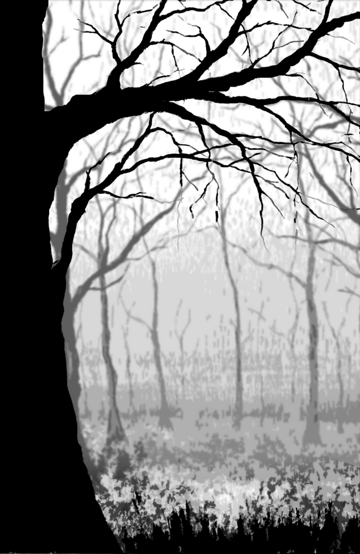 Black and White Tree Forest by blablover5 on DeviantArt