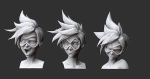 Tracer facial expression study