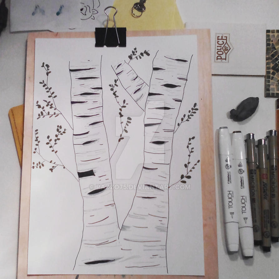 Birch Tree by pazzo75