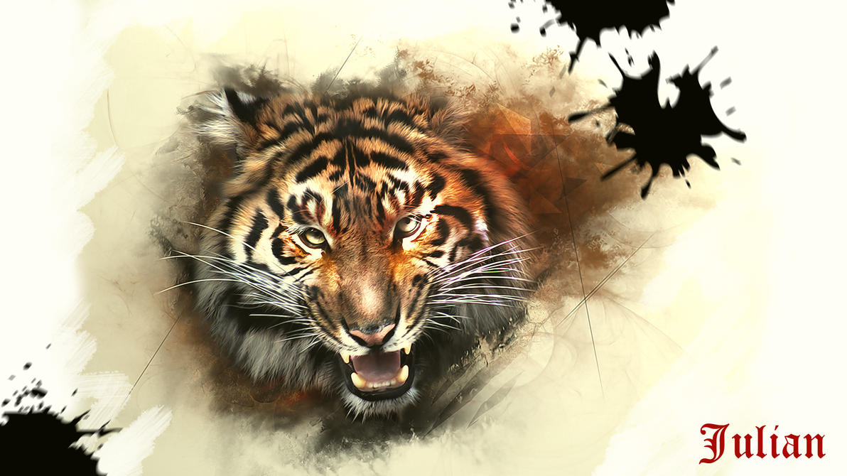 Tiger roaring drawing side view