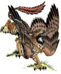 Griffin Commission