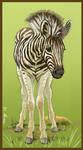 Brenda's Birthday Zebra