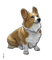 Winnie the Corgi by Dustmeat