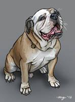 Kampyer the Bulldog by Dustmeat