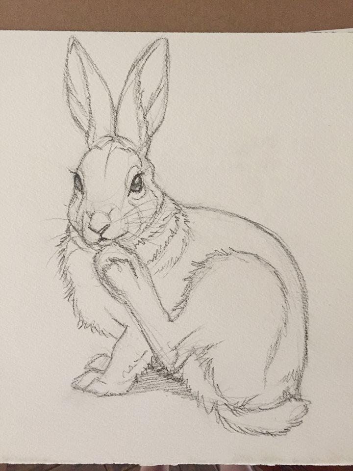Rabbit foot by Dustmeat