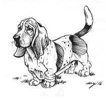 Basset hound by Dustmeat