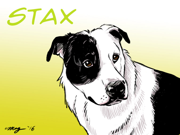 Stax the Dog by Dustmeat