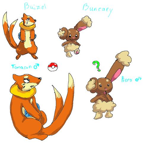 Pokemon Buneary Evolution Images | Pokemon Images