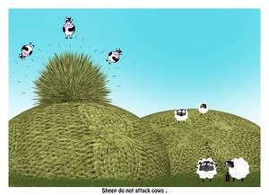 Sheep Do Not Attack Cows