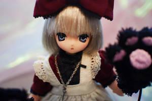 Cheshire Cat Aika