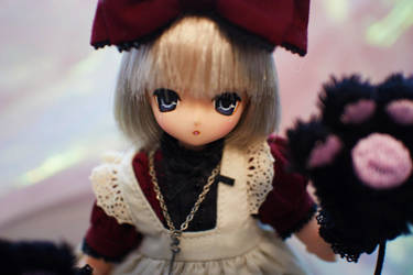 Cheshire Cat Aika by fleur-