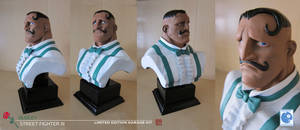 Dudley Bust Painted