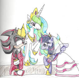 Shadow and Twilight Sparkle Wedding