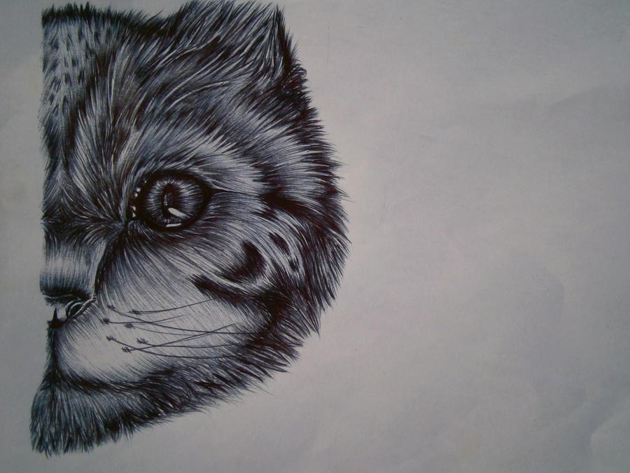 Ballpoint cat by SofieRogers