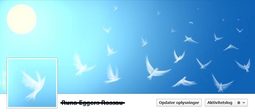 Pigeons on my facebook! by Dunayay