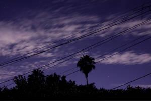 Purple Sky by heypeter