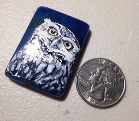 Burrowing Owl WIP